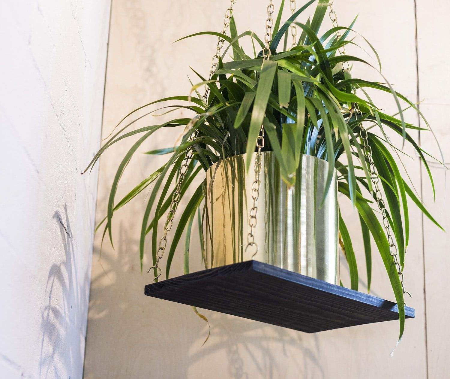 5 reasons to add greenery to your workspace