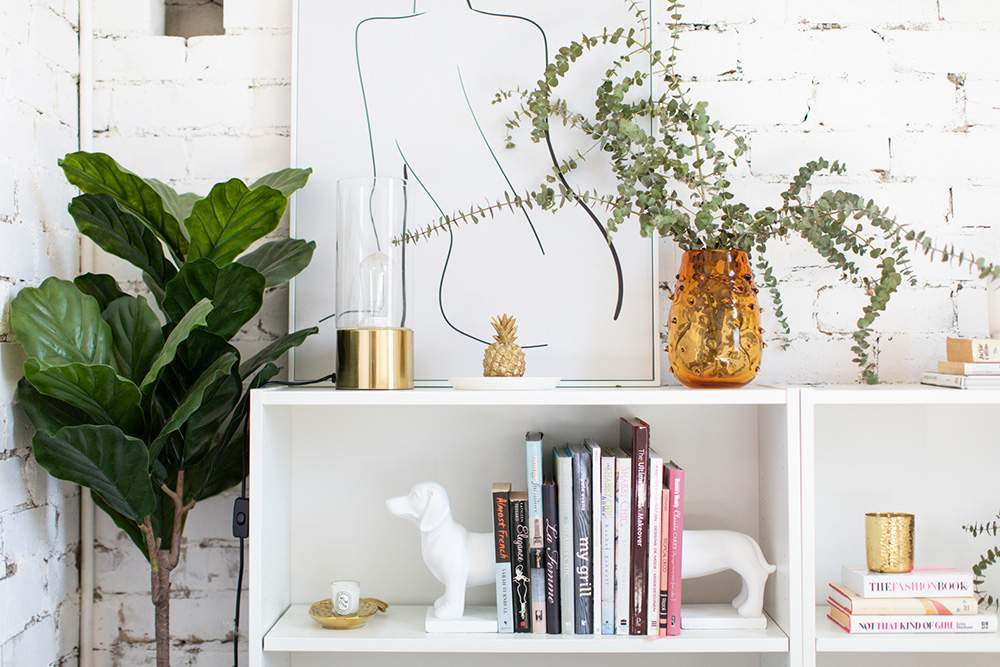 Melbourne Social Co's studio on Puckle Street in Moonee Ponds